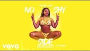 Chronic Law - No Shy Side